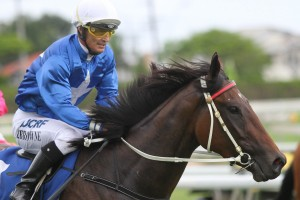 Damian Browne will partner Pride Of Dubai in the Blue Diamond Prelude on Saturday.