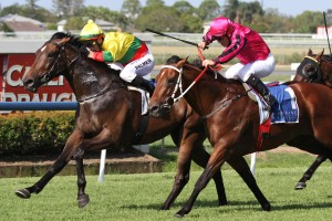 Lucky Hussler is chasing his second straight win in the Lough Neagh Stakes at Doomben on Saturday.