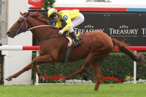 Aldini has produced a strong turn of foot to win the 2014 Spear Chief Handicap
