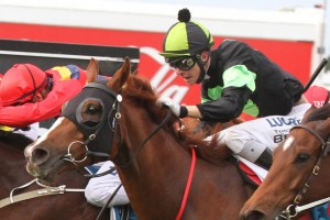 Sir Moments has claimed the 2014 Queensland Guineas in a close finish