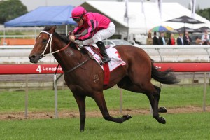 Gold Coast Guineas 2013 – Race Tips