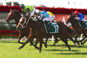 Tsaritsa may contest the Group 1 Tattersall's Tiara at Eagle Farm in a fortnight. Photo: Daniel Costello