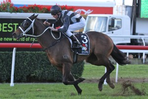 Red Tracer Wins 2013 Tattersall's Tiara – Race Results
