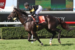 Better Than Ready leads 2014 Rubiton Stakes Nominations