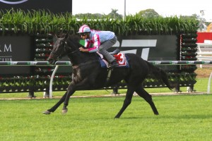 10 Horse 2016 Doomben 10,000 Field Released