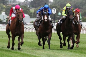 Kensington Stakes winner The Quarterback (outside) has his sights on the Group 1 Newmarket Handicap in the autumn.