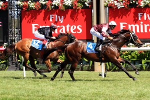 2016 Caulfield Sprint Tips and Betting Preview