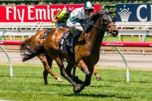 First Command is chasing his third straight win in the Kensignton Stakes at Flemington this weekend.