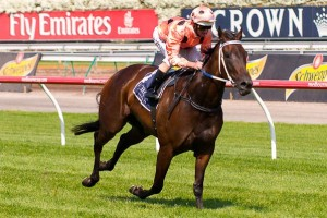 Lightning Stakes betting favourite Black Caviar won three times