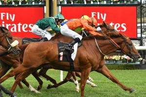 2017 TJ Smith Stakes First Acceptances Released