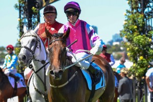 Loveyamadly is chasing her second victory at Listed level in the Doveton Stakes at Caulfield tomorrow.