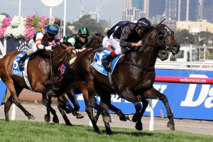 Fiorente has been nominated for the 2014 The BMW