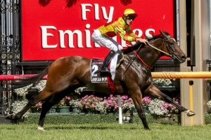 Jockey Craig Newitt is confident Lankan Rupee will have no issue leaving from the wide barrier in the 2014 McEwen Stakes