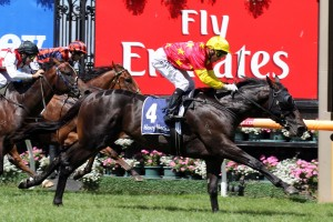 Zululand will be back in blinkers for the 2014 Caulfield Guineas.