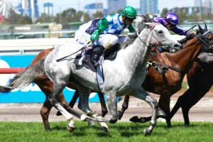 Long Range 2013 Melbourne Cup Tips