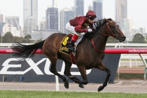 Noble Protector will enjoy an inside jump from barrier one in the Group 2 Sunline Stakes.