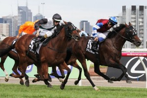 Extra Zero (outside) will run in the Group 1 BMW after his impressive runner-up finish in the Australian Cup.