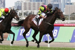 Injured Suavito Out of 2015 Spring Carnival