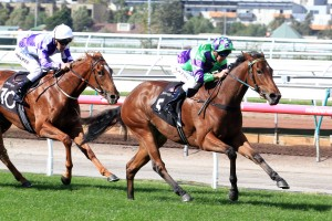 2016 Furious Stakes Odds and Betting Update