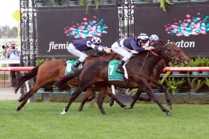 2017 Newmarket Handicap Considered for Supido