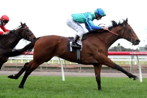 Thomas Sadler (seen her aboard Reckless Assassin) has secured the ride of the Lloyd Williams-owned Massiyn at Moonee Valley this Saturday.