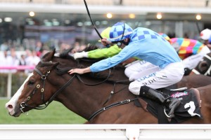 Don't Doubt Mamma sneaks up the inside to win the Let's Elope Stakes at Flemington. Photo by Ultimate Racing Photos.