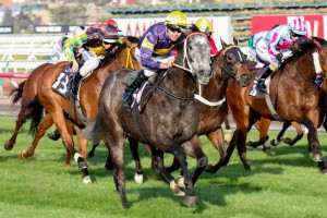 Chautauqua has secured an impressive victory in the 2014 Bobbie Lewis Quality