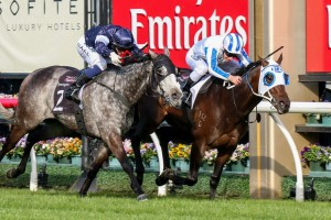 Dissident (inside) is featured among the 41 third acceptances for the Cox Plate.