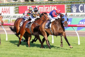 Forever Loved brings the Blazer Stakes 2014 home for Gai Waterhouse.