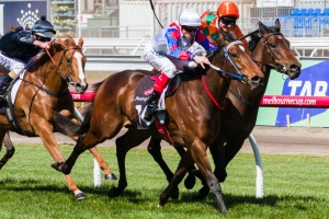 2015 Sir John Monash Stakes Tips and Betting Preview