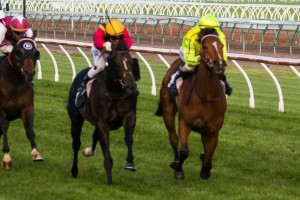 Spirit of Boom in Gilgai Stakes at Flemington on 05 October 2013. Platelet (inside), Spirit of Boom (outside). Picture by: Race Horse Photos Australia.