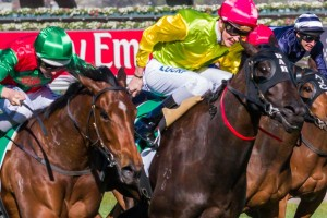 Star Fashion has been included in nominations for the 2014 SA Fillies Classic