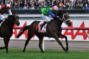 Trainer Natalie Young is pleased with the form of Sangster ahead of the 2014 Spring Racing Carnival