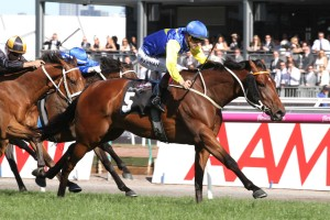 Le Romain is primed for a strong run in Saturday's Doncaster Mile at Randwick. Photo: Ultimate Racing Photos