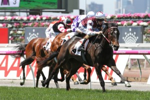 Crown Oaks Likely for Wakeful Stakes Winner Tiamo Grace