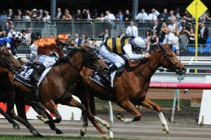 Gailo Chop, white cap. kicks back on the fence to win the Mackinnon Stakes at Flemington. Photo by Steve Hart.