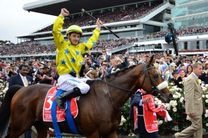 Jockey Christophe Lemaire will look to partner Verema to victory in the 2013 Melbourne Cup.