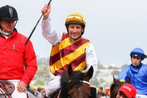 Damien Oliver will ride German galloper Magic Artist in the Kingston Town Classic at Ascot. Photo by Adrienne Bicknell.