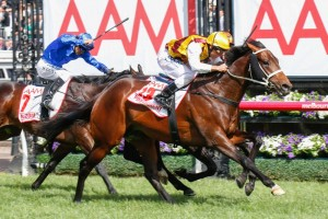 Master Agar could take on Preferment (pictured) in the Australian Derby following his maiden win on Wednesday.