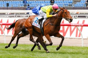 Thunder Lady will aim to complete the Wakeful Stakes/Crown Oaks double on Thursday from barrier eight.