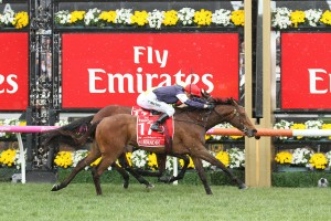 Melbourne Cup Field & Betting at Ladbrokes.com.au