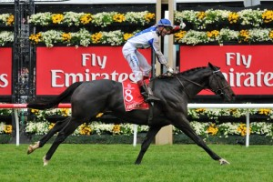 Famous Melbourne Cup Horses & Odds - Ladbrokes