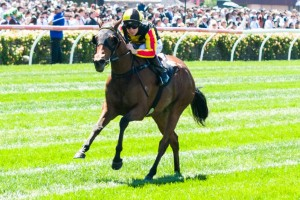 Kirramosa is betting favourite for the 2013 Melbourne Cup.