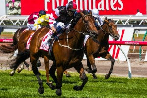 Polanski will be aiming for four straight victories in the 2014 Autumn Stakes