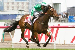 Fiveandahalfstar has been ruled out of the autumn carnival due to injury.