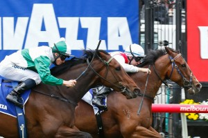 Spy Decoder (outside) will return to racing at Royal Randwick on Saturday. Photo: Sarah Ebbett