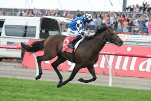 Protectionist shot to an impressive four length victory in the 2014 Melbourne Cup. Image: Steve Hart.