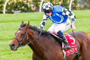 Protectionist