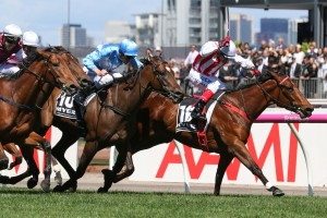 Sydney Autumn Racing Horses to back at Ladbrokes: Shoals