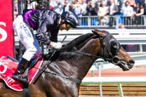 Fiorente passes the post in the 2013 Melbourne Cup. Photo: Race Horse Photos Australia.